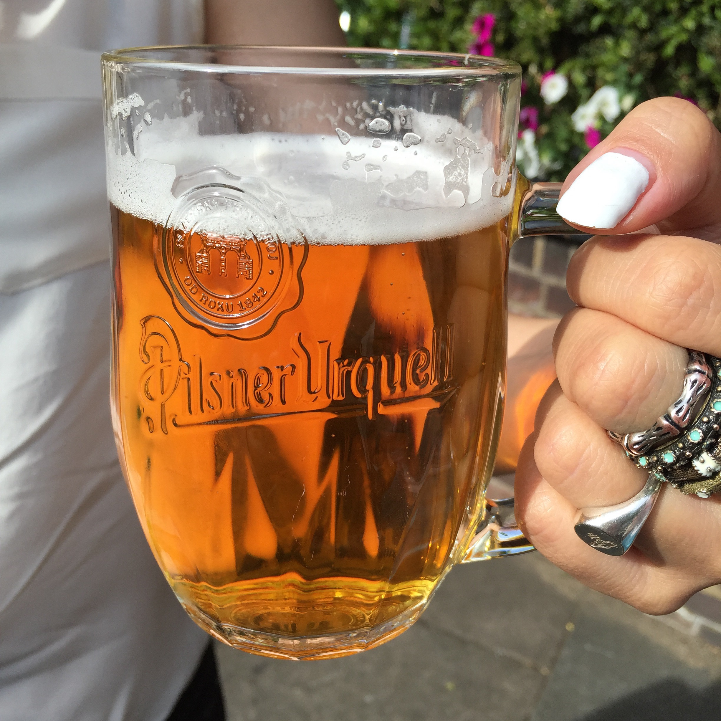 Summer drinking, unfiltered Pilsner Urquell